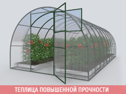 Теплица «НОВАТОР-Премиум ЦИНК», ширина 3м