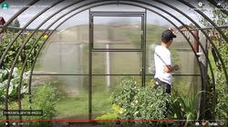 Видеоинструкция установки теплицы «Новатор»