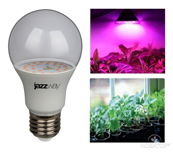 Фитолампа для растений «PPG A60 AGRO»